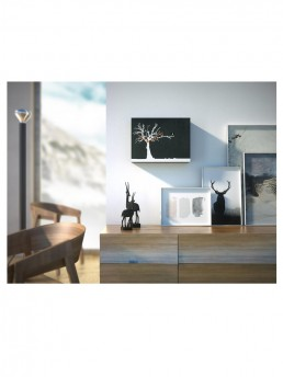 """Cucuruku"" Cuckoo Clock - Black Wood, White Tree, Orange Hands - Lifestyle Photo"