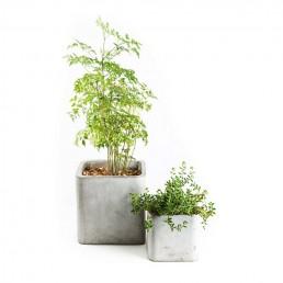 granada table top concrete planters